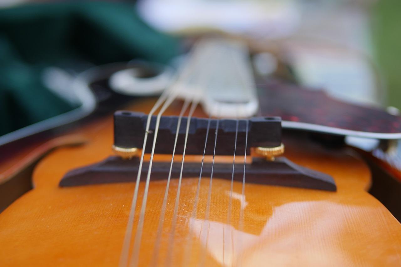 fiddle, violin, music-5244836.jpg